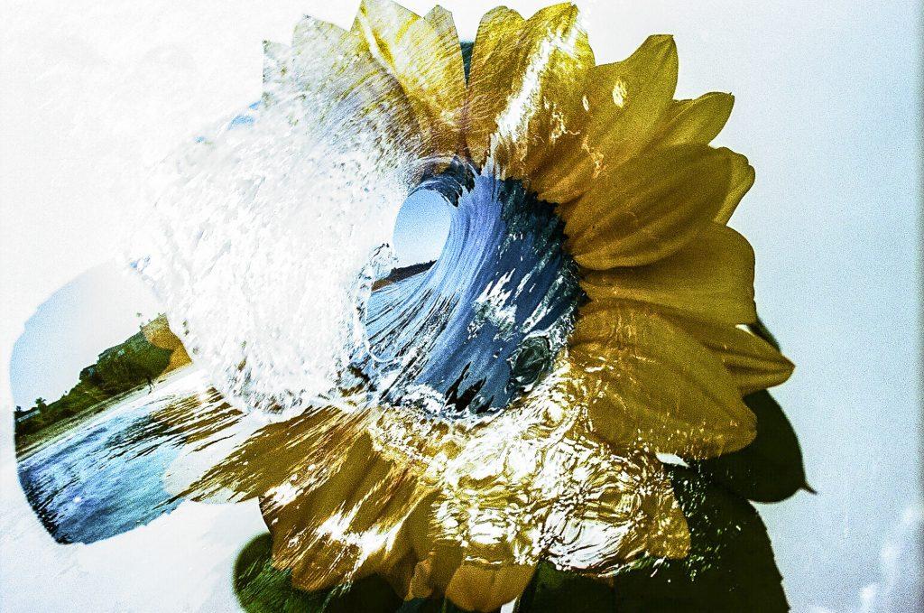 double exposure flower series