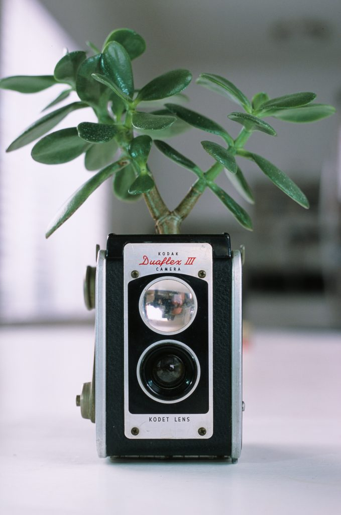 Fujifilm Provia 100f