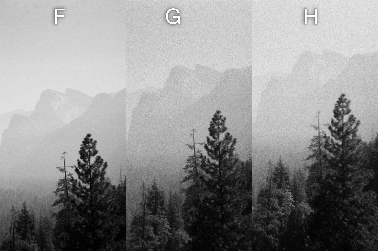 Disposable Single Use Cameras B&W Photo Comparison - Landscape