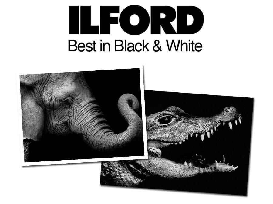 Truu Black & White Printing